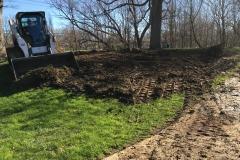 Turf Restoration