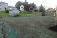 Rear Yard Lawn After