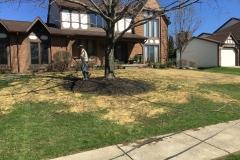Front Yard Lawn Repair
